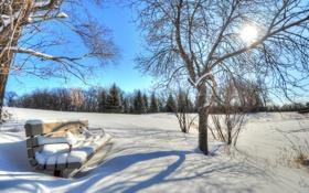 Картинка небо, солнце, скамья, деревья, зима, снег, парк
