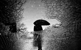 Картинка дорога, город, отражение, дождь, человек, зонт, лужа