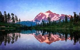 Картинка лес, трава, вода, снег, отражение, вершина, США