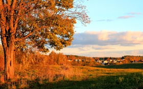 Картинка облака, осень, поселок, дома, деревья, небо, городок