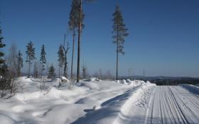 Обои зима, снег, блеск, мороз, дорога