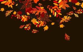 Обои осень, листья, коллаж, вектор
