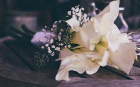 Обои букет, каллы, свадебный