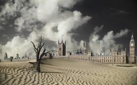 Картинка дерево, пустыня, Лондон, засуха, Биг-Бен, London, Лондонский глаз