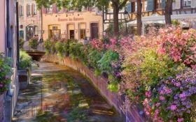 Обои цветы, улица, канал, France, Alsace, Colmar