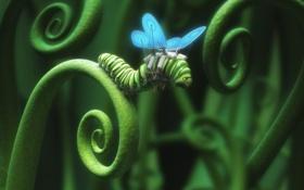 Обои гусеница, крылья, Reckless Impatience