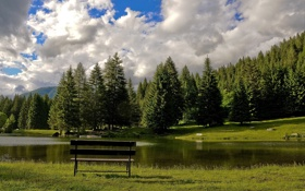 Картинка лес, трава, небо, облака, вода, озеро, хвоя