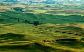Обои трава, деревья, холмы, поля, Италия
