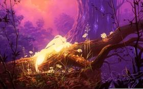 Обои деревья, лес, арт, Ori, Ori and the Blind Forest