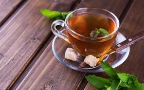 Обои мята, чай, сахар
