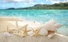 Картинка море, небо, облака, горы, побережье, ракушки, морские звезды