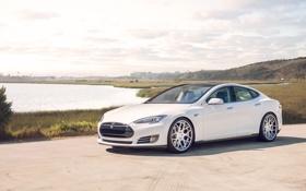 Картинка white, front, sedan, model s, tesla