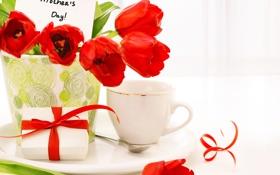 Картинка любовь, цветы, тюльпаны