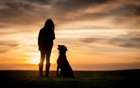 Картинка закат, собака, девочка