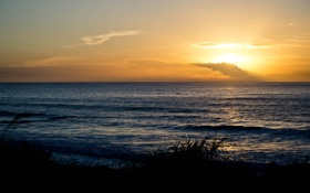 Обои море, трава, облака, закат, берег, силуэт