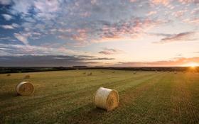 Картинка поле, небо, солнце, облака, лучи, пейзаж, закат