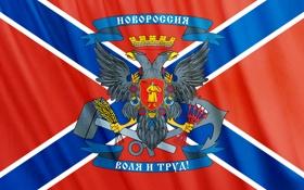 Обои флаг, герб, Новороссия