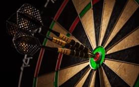 Обои darts, colors, dartboard, perfection