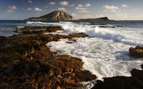 Картинка море, волны, пена, брызги, природа, камни, скалы