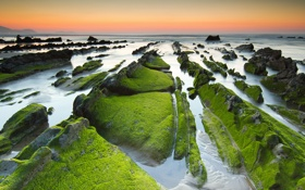 Картинка море, небо, водоросли, закат, камни, скалы, отлив