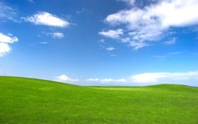 Картинка облака, трава, небо, холмы, поле, пейзажи, поля