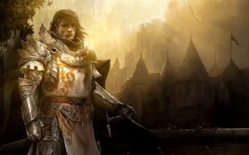 Обои мужик, броня, guild wars2