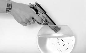 Картинка птицы, пистолет, аквариум