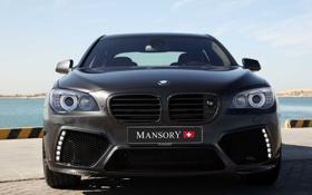 Обои авто, фары, тюнинг, BMW, передок, 7 Series, Mansory