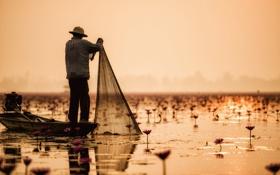 Картинка ажурные, солнечный, рыбак, озеро, зеркало, туман, отражение