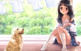 Обои аниме, девочка, лето, собака