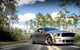 Обои дорога, небо, облака, деревья, серый, Mustang, Ford