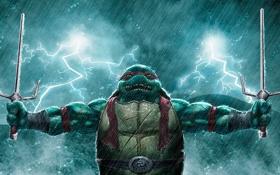 Картинка Рафаэль, TMNT, Raphael, черепашки ниндзя, Teenage mutant ninja turtles