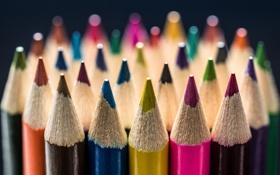 Обои макро, синий, жёлтый, розовый, коричневый, малиновый, цветные карандаши