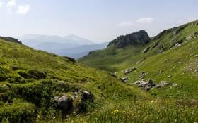 Обои лето, горы, гора, Россия, Адыгея