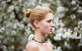 Картинка девушка, деревья, цвет, портрет, ветка, весна
