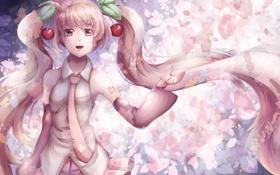Обои девушка, цветы, аниме, сакура, арт, vocaloid, вишенки