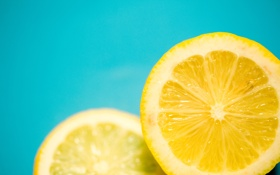Обои макро, лимон, кольцо, долька, цитрус