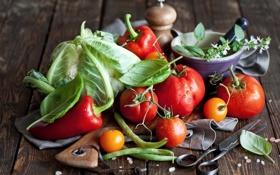 Обои овощи, помидоры, капуста