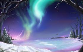 Обои холод, зима, дорога, небо, свет, снег, деревья
