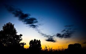 Обои закат, пейзаж, деревья, природа, тень, небо, вечер
