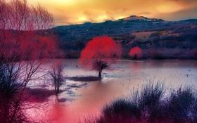 Обои осень, облака, деревья, горы, озеро, зарево
