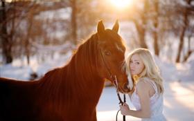 Обои фон, девушка, конь