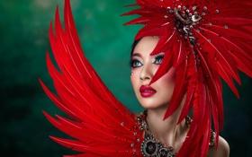 Обои девушка, перья, макияж, Chakrit Chanpen