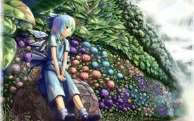 Обои лето, цветы, аниме, сад, девочка