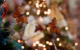 Картинка макро, бабочки, фон, игрушки