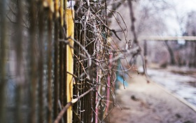 Обои весна, ветки, тлен, грязь, забор, улица, Россия