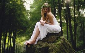 Обои лес, девушка, камень, венок