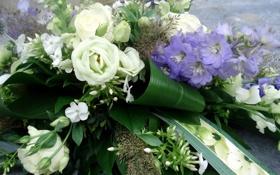 Картинка листья, любовь, цветы, природа, розы, красота, букет