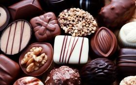 Картинка белый, темный, шоколад, конфеты, сладости, орехи, десерт
