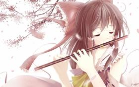 Обои весна, аниме, сакура, девочка, флейта